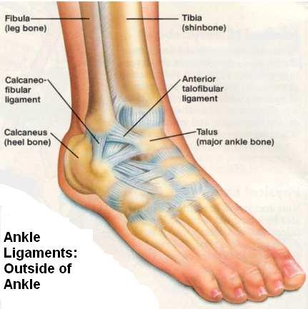 Torn Ligaments